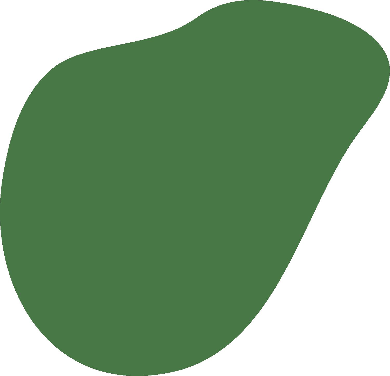 Form1_ljusgron
